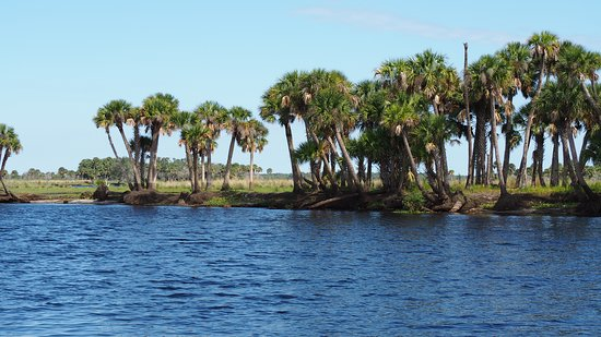 Tosohatchee State Reserve