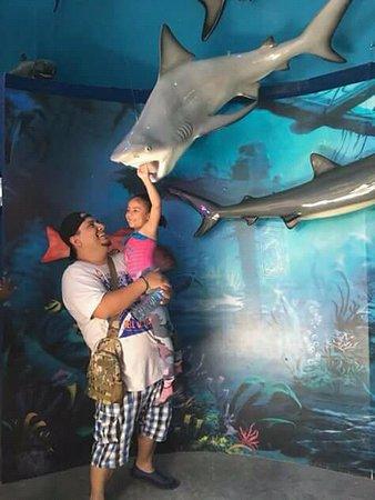 Cuidado el tiburón se puede comer a mi nieta y su papá