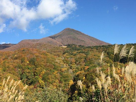Yama-gun, Japan: 紅葉が始まっています