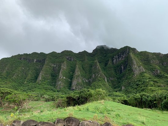 Kualoa Ranch - Hollywood Movie Site & Ranch Tour: just beautiful