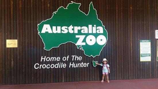Australia Zoo (Beerwah) - 2021 Lo que se debe saber antes de viajar -  Tripadvisor