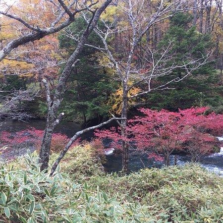 Highlight in Nikko