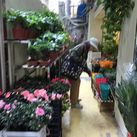 Flower Market Road: photo0.jpg
