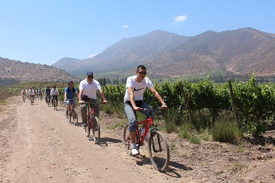 Maipo Valley and Santa Rita Wine Tour...