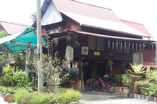 Excursão privada à Ilha de Penang...