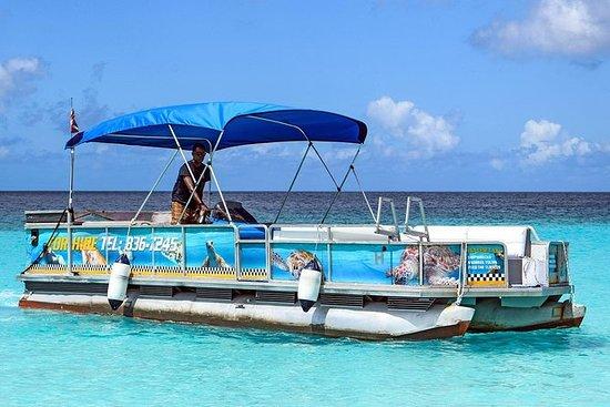 Barbados Snorkel Adventure in...