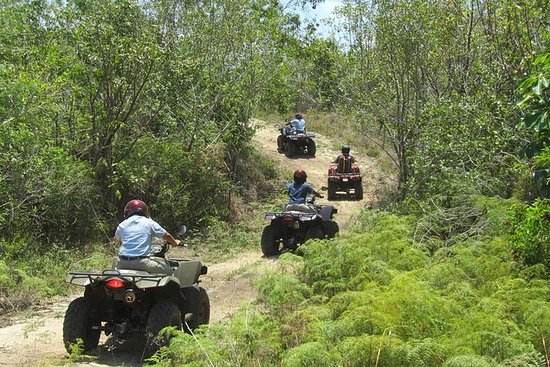 Grand Bahama ATV Tour from Freeport