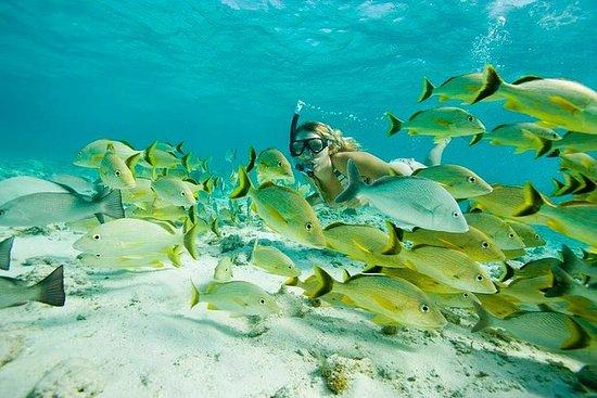 Santa Maria und Chileno Bay Snorkel...