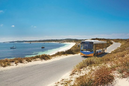 Tour de ônibus Rottnest Island Explorer de Hillarys...