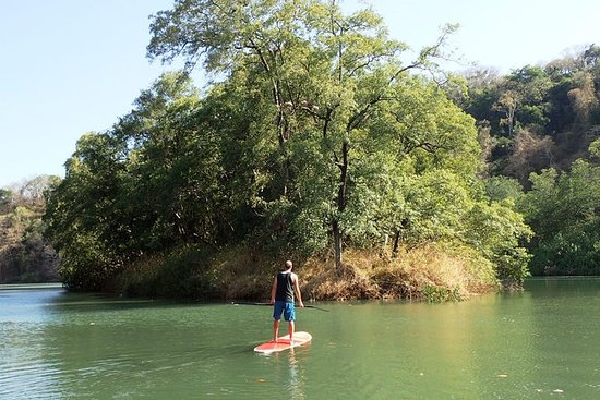 Samara Mangrove Stand Up Paddle