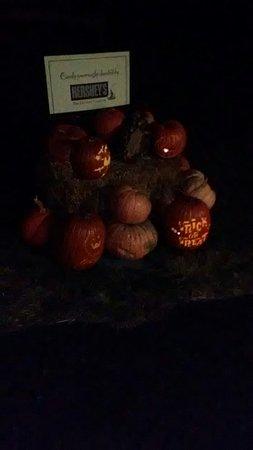 Pumpkin Glow