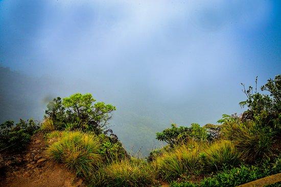 Blue Lanka Tours: Horton Plains National Park
