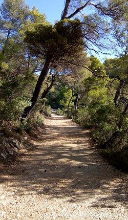 Mljet National Park, Kroatia: IMG_20180925_093439_large.jpg
