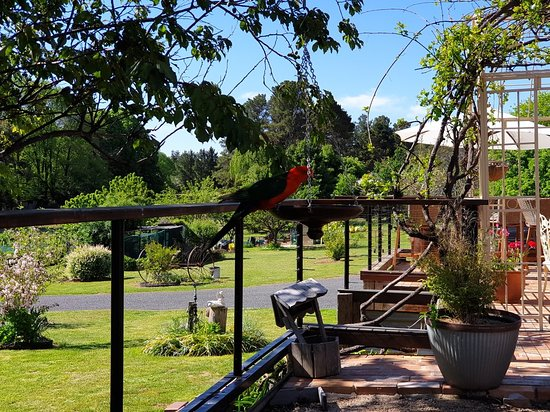 Balcony - Hill End Estate Picture