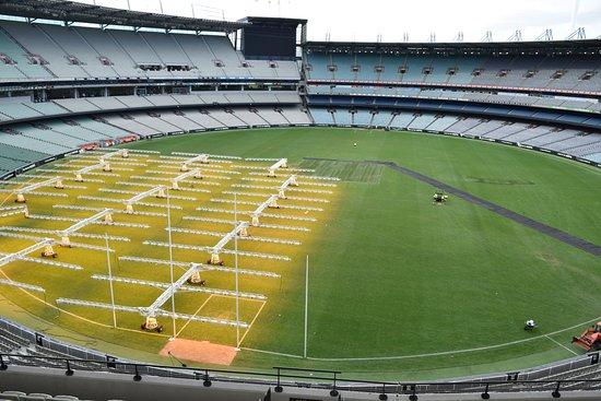 Melbourne Cricket Ground (MCG): The photo of a lifetime