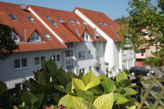 Hotel Leo Muhlhausen