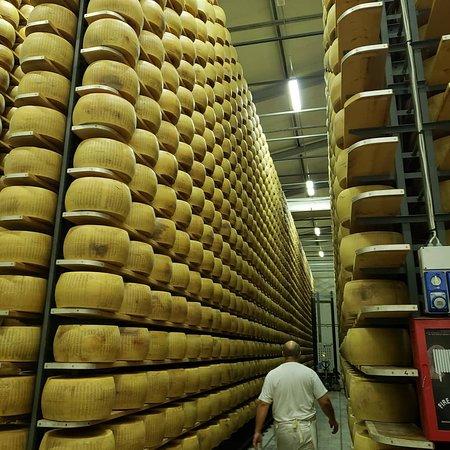 Italian Days Food Experience: IMG_20181018_213237_631_large.jpg