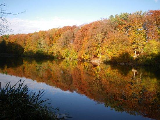 Sollerod Naturpark