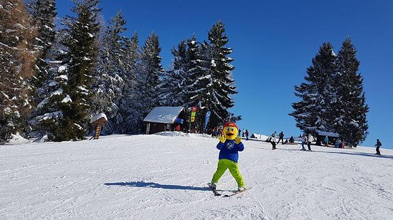 Ski school and ski rental Novinar Cerkno