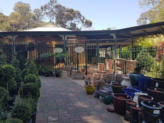 Tea Tree Gully, Australia: 20181027_124557_large.jpg