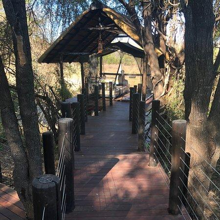 Jock Safari Lodge: photo0.jpg
