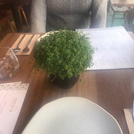 Patara Restaurant London Reviews   Gayot