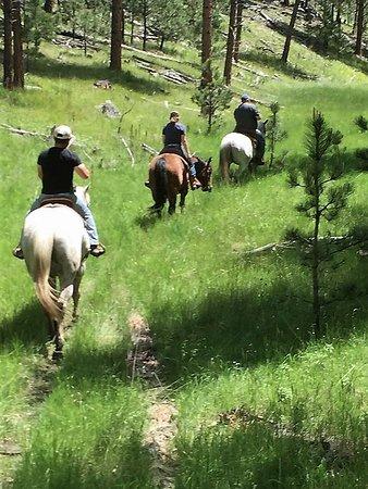 Trail riding through the Black Hills