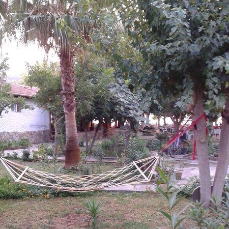 Orhaniye, Turcja: photo1.jpg