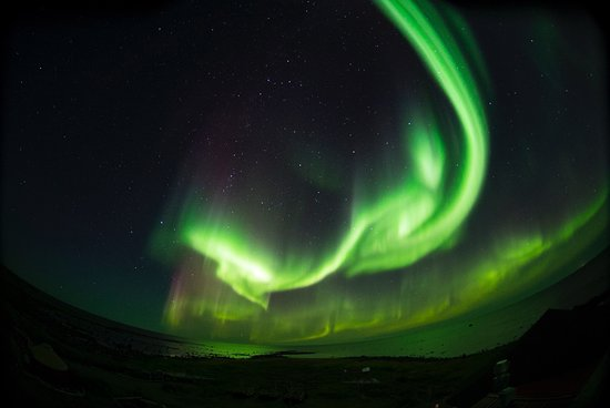 Seal River, Canada : Northern lights every night! The photos do not do the experience justice!
