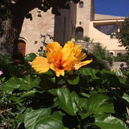 Villia, Grecja: Μονή Οσίου Μελετίου. Οινόη.