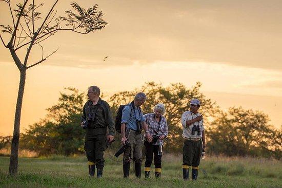 San Ignacio, Argentina: Excursion a los Esteros del Ibera