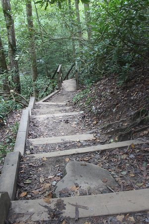 the steps to the falls