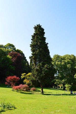 Parco Giardino Sigurta: panoramica