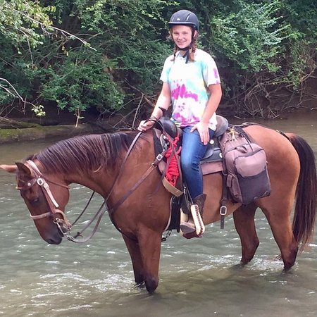 Dunlap, TN : My daughter enjoyed a week of horse camp in 2017. Priceless experience - she learned so much abo
