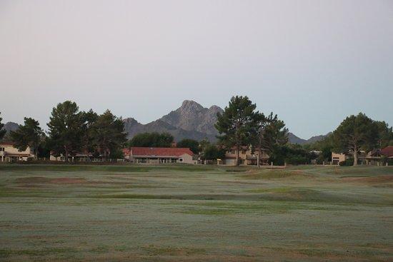 Landscape - Embassy Suites by Hilton Phoenix-Scottsdale Photo