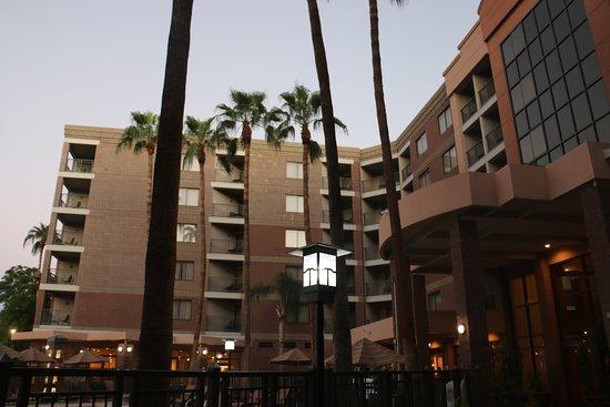 Window View - Embassy Suites by Hilton Phoenix-Scottsdale Photo