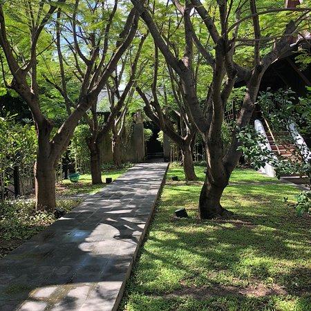 Su Thep, Thaïlande: photo1.jpg