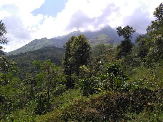 Banasura hills after 2km hike from peters falls