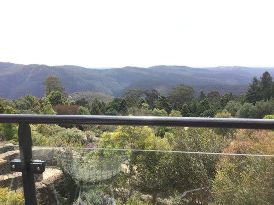 Mount Tomah, Australia: View from The Potager Cafe @ Mt Tomah Botanic Gardens