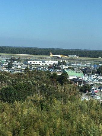 Narita Tobu Hotel Airport: Scenic View fro Room Window