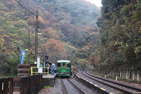 Miyoshi, Japan: 坪尻駅構内