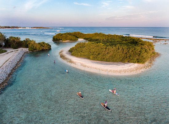 Season Paradise : Sunset SUP through warm crystal waters of Indian Ocean @maldivessurfphotographer @indulge.maldiv