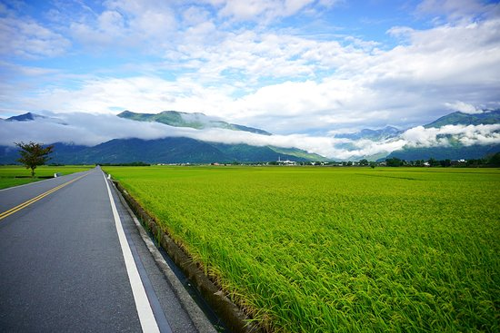 Taitung Brown's Road
