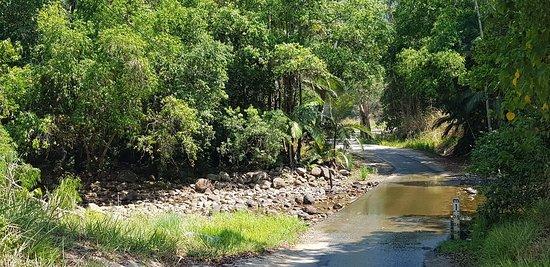 Finch Hatton, Australia: 20181028_100251_large.jpg