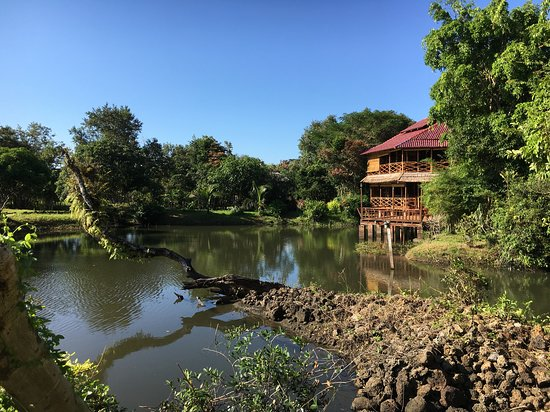 Ban Khiet Ngong, Lào: View of the restaurant from across kingfisher pond