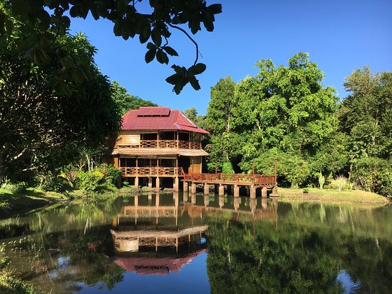 Ban Khiet Ngong, Lào: View of the restaurant building set in the forest with pond in front