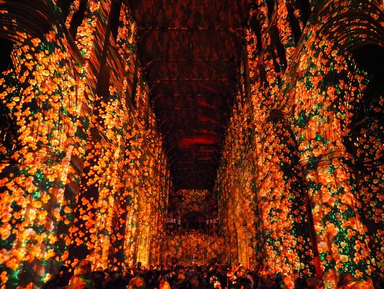 St Albans Cathedral: Remembrance Illumiations