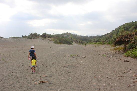 Sigatoka Sand Dunes National Park: Sand dune.