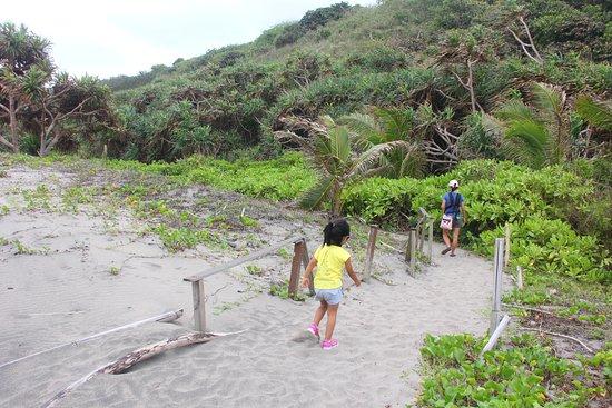 Sigatoka Sand Dunes National Park: Walking back.