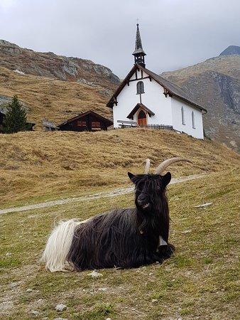 Belalp, Suiza: Découverte autour de la pension de Tigilou